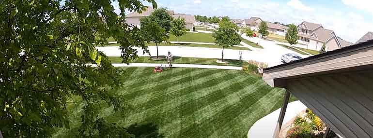 checkboard lawn mowing patterns