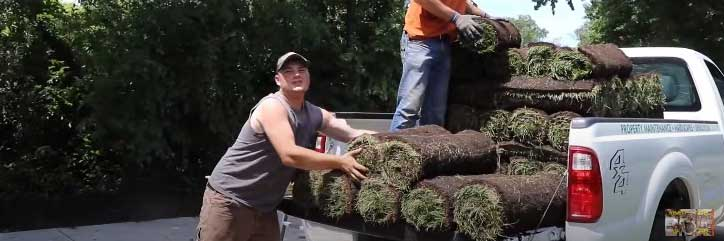 online sod delivery
