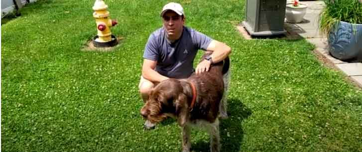 how to fix a muddy backyard dog trail
