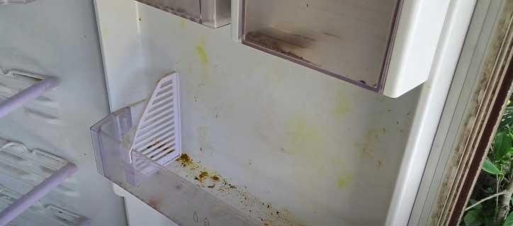 replacing old refrigerator