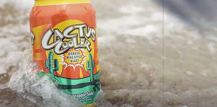 why is cactus cooler so expensive